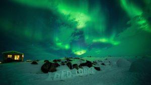 World of Greenland - Visit Greenland